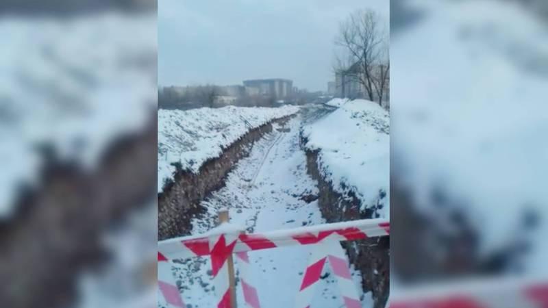 Бишкекчанка опечалена тем, что в парке Победы вырубаются деревья