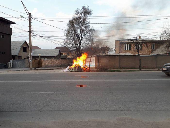Активист: На Горького-Абая нерадивые горожане подожгли мусор и спалили дерево