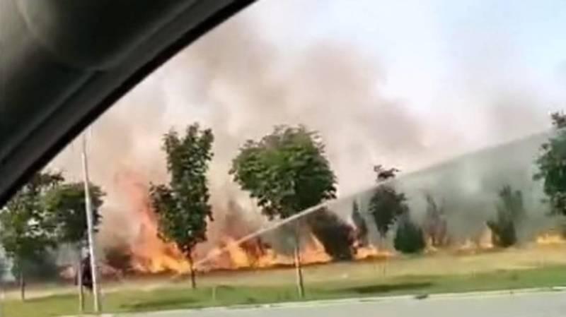 В Бишкеке произошел пожар возле парка Ынтымак. Видео очевидцев