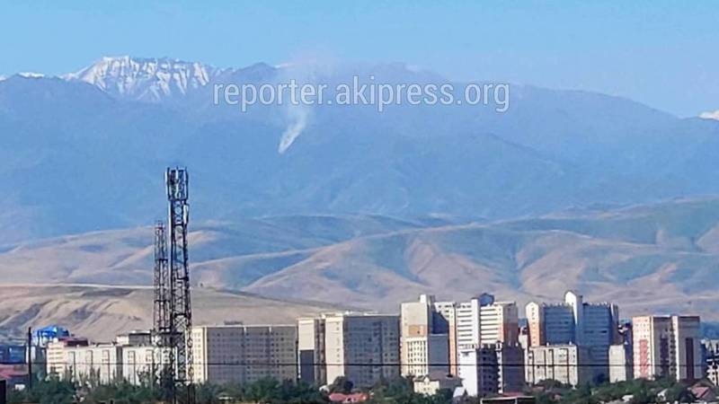 В горах Аламединского района что-то горит. Фото и видео очевидцев