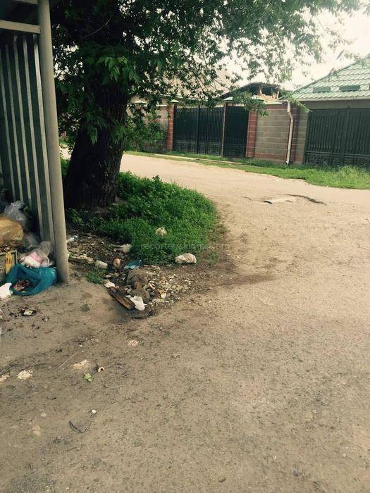 На Крылова-Фруктовой в районе Пишпека нет мусорных баков, что приводит к образованию свалки (фото)