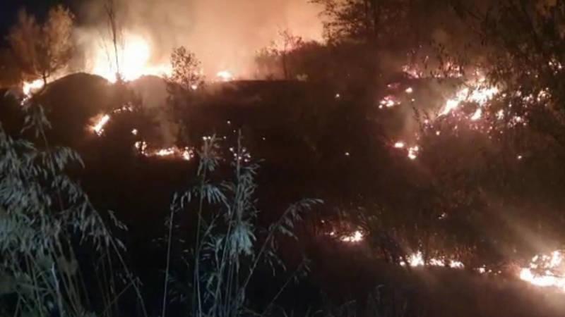 Пожар возле госрезиденции «Ала-Арча» произошел из-за предложения руки и сердца? Видео