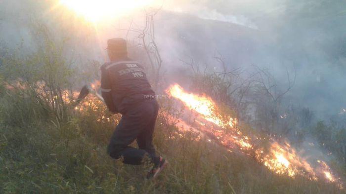 <b>Пожар в лесу Кара-Арча.</b> Горят растения <i>(видео, фото)</i>
