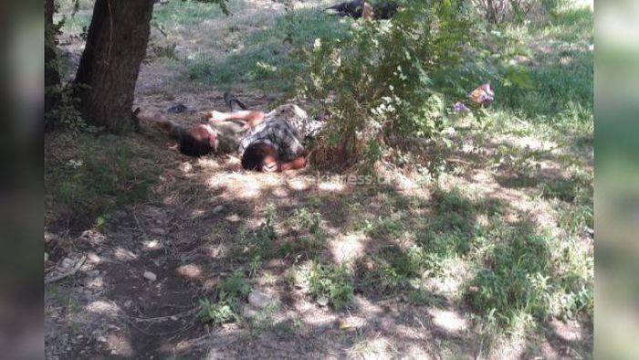 Милиция примет меры, чтобы в 7 мкр возле детской площадки не ночевали бомжи