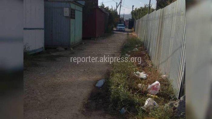 СЭИ составила протокол на владельца салона в Арча-Бешике за загрязненный участок