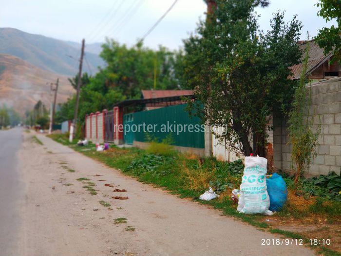 Житель Таш-Дебе просит построить мусорные площадки в селе (видео)