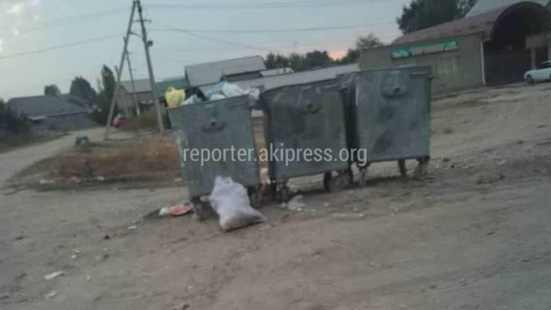 На Ахунбаева-Чортекова не забрали мусор
