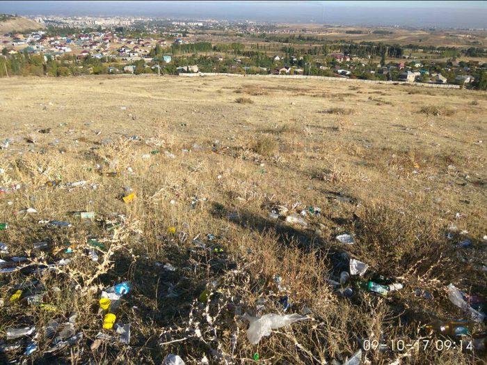Читатель жалуется на мусор по дороге на Таштар-Ату (фото)