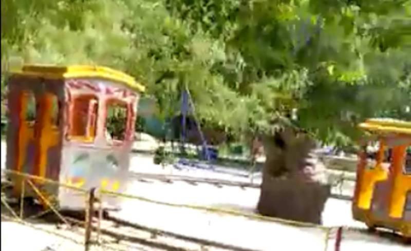 Жители Бишкека просят установить уличные тренажеры в парке за Аламединском рынком (видео)