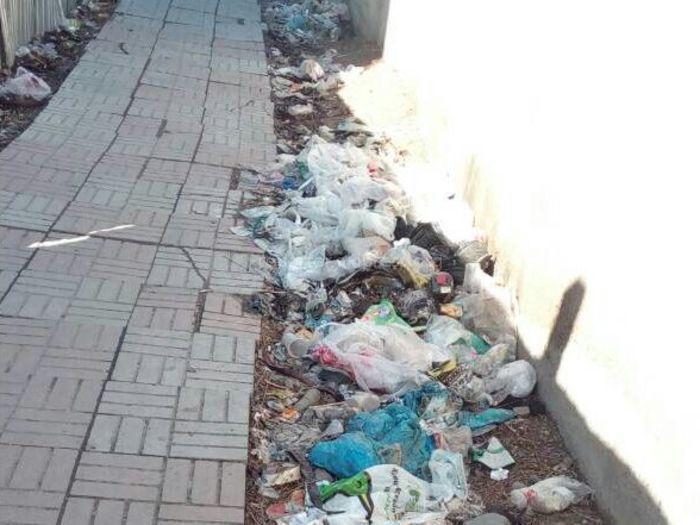 В южной части парка им.Ататюрка и за стеной Западного автовокзала близ «Тазалыка» навален мусор, - бишкекчанин (фото)