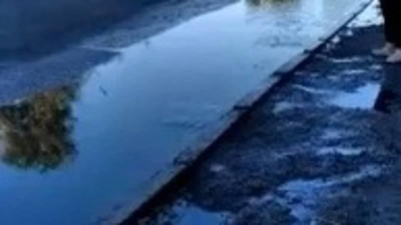 На проспекте Жибек Жолу прорвало трубу, вода подтопила остановку. Видео очевидца