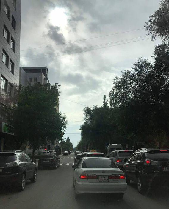 На Боконбаева-Исанова ветки дерева закрывают светофор (фото)