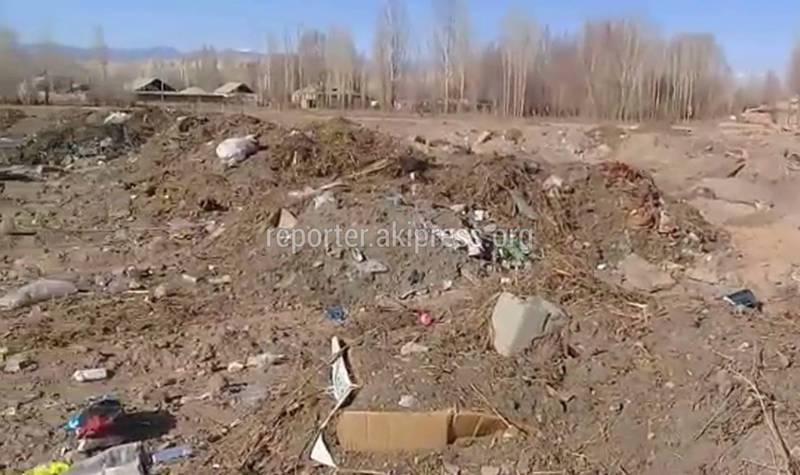 В селе Баетово устроили мусорную свалку возле жилых домов (видео)