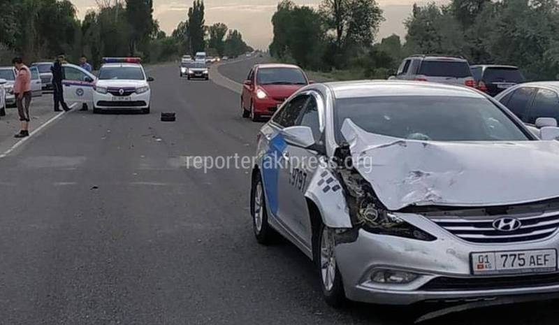 На автотдороге Бишкек—Каракол машина насмерть сбила корову, - очевидец (видео)