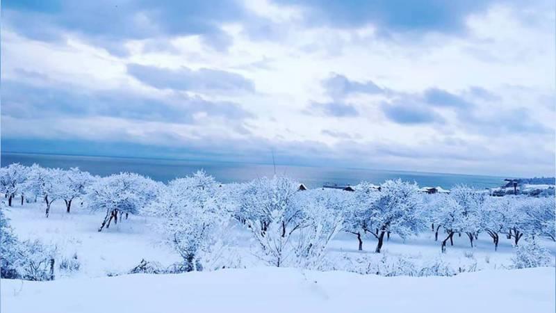 В канун Нового года на Иссык-Куле выпал сказочный снег. Фото