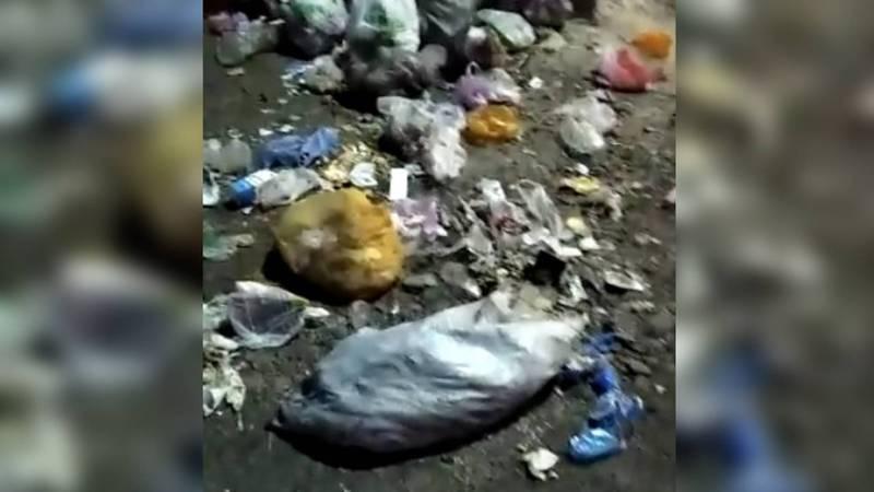 В Новопавловке возле школы №1 не вывозят мусор. Видео
