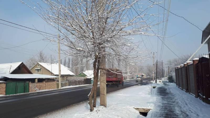 Что нужно сделать, чтобы вернуть автобус №35 на ул.Осмонкула? - бишкекчанка