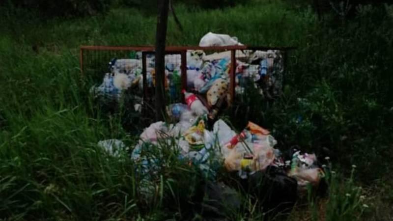 Бишкекчанка жалуется на мусор в Ботсаду имени Гареева. Видео и фото