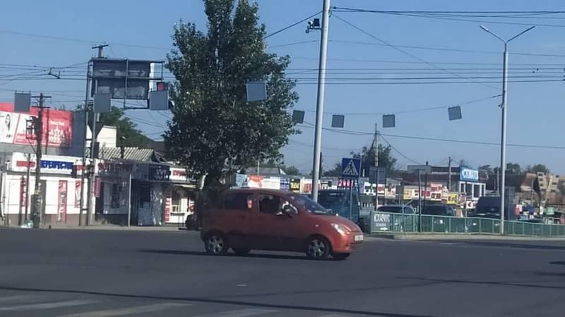 На ул.Курманжан Датка дорожные знаки закрывают обзор на светофор. Фото горожанина