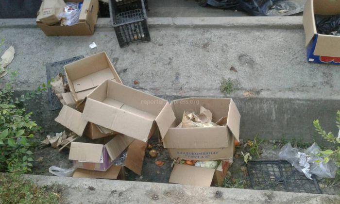 В мкр Аламедин-1 мусор оставляют в арыках, - житель (фото)
