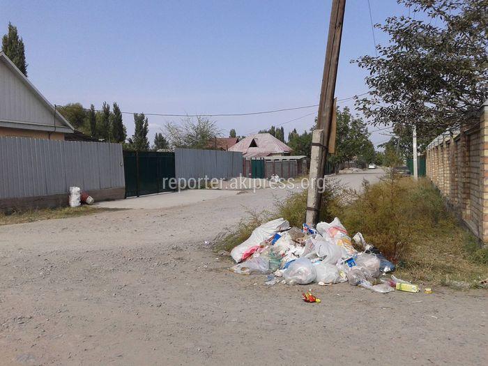На улице Эшпая в Новопокровке не вывозится мусор