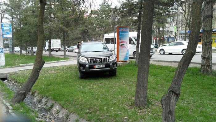 «Доска позора»: Читатели требуют наказать водителей, нарушивших ПДД (фото, видео)