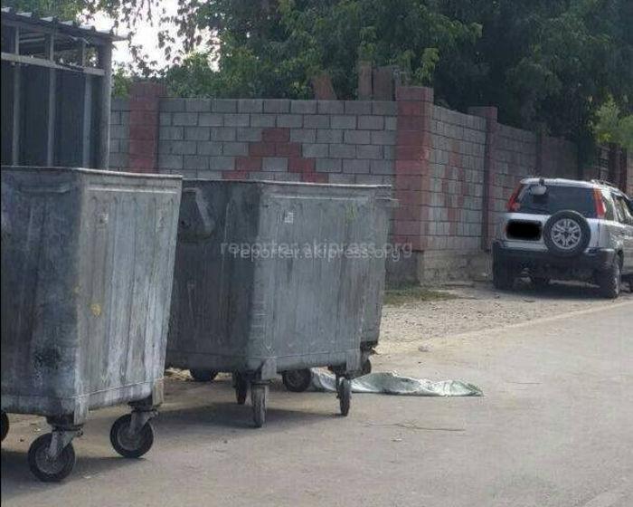 Милиция ведет доследственную проверку по факту обнаружения тела младенца в мусорном баке