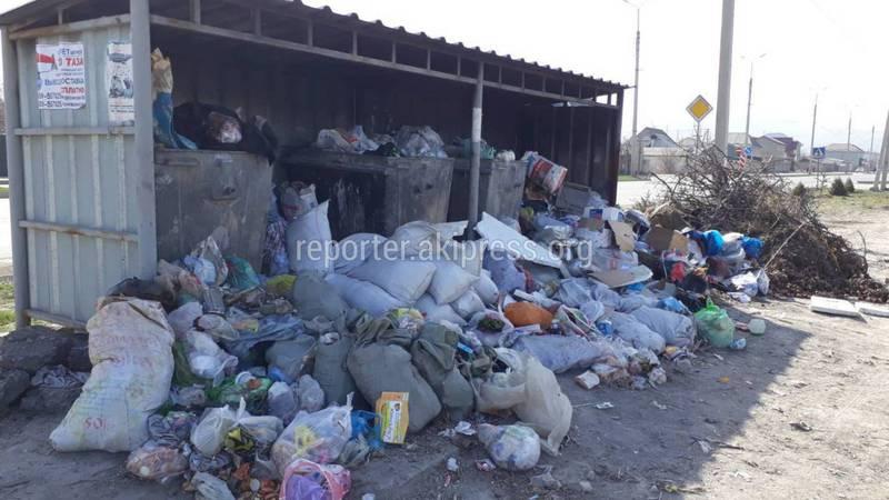 В Арча-Бешике на ул.Чортеков не вывозят мусор, - местный житель (фото)