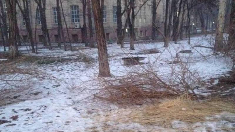 Горожанин просит убирать солому в сквере на ул.Тыныстанова. Фото