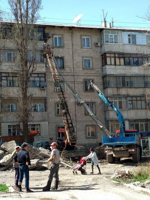 Дерево упало на дом при выкорчевывании плит на ул.Акиева в Бишкеке <i>(фото)</i>