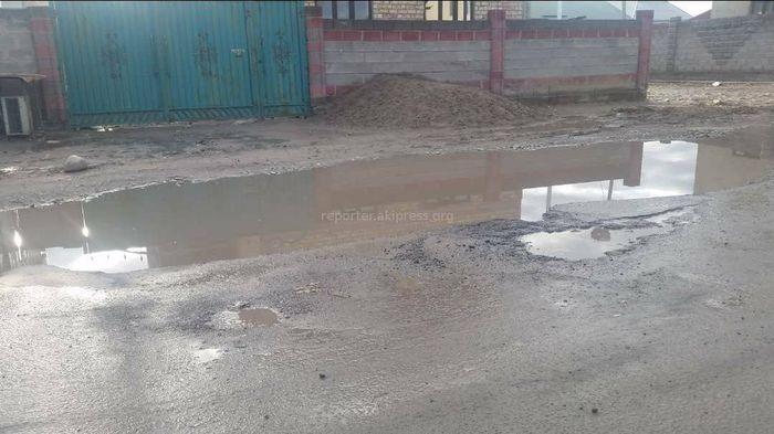 На ул.Гоголя в селе Новопаловка образовались ямы (фото)