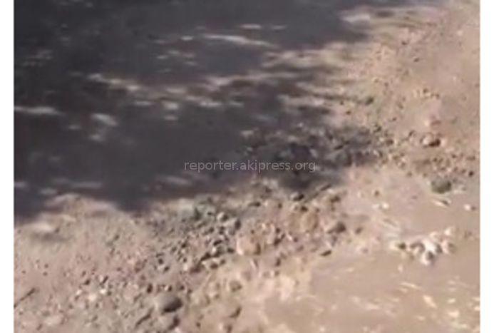 Бишкекчанин просит отремонтировать ул.Целиноградской (видео)