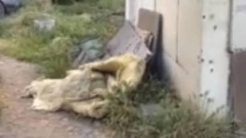 Горожанин жалуется на мусор в мкр Улан. Видео