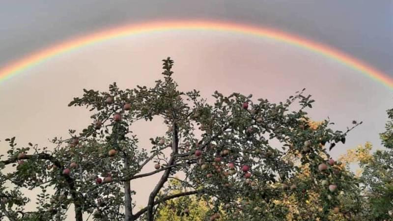Красивая радуга в небе. Фото из села Кой-Таш