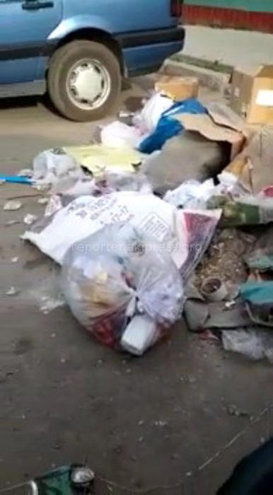 В центре села Беловодское образовалась свалка (видео)