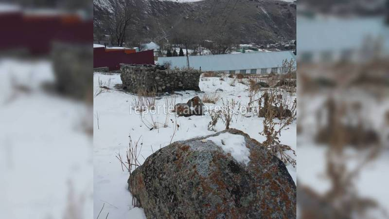 После публикации на «Репортере» убрали мусор у въезда в курортологию Иссык-Ата