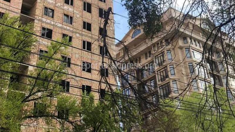 На ул.Боконбаева ветки старого дерева упали на провода, - бишкекчанин
