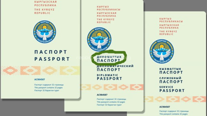 ГРС признала, что «специально сделала ошибку» в образце новых паспортов для привлечения внимания