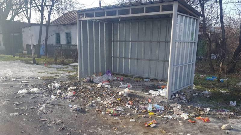 В Рабочем городе нет мусорных баков, что приводит к образованию свалки
