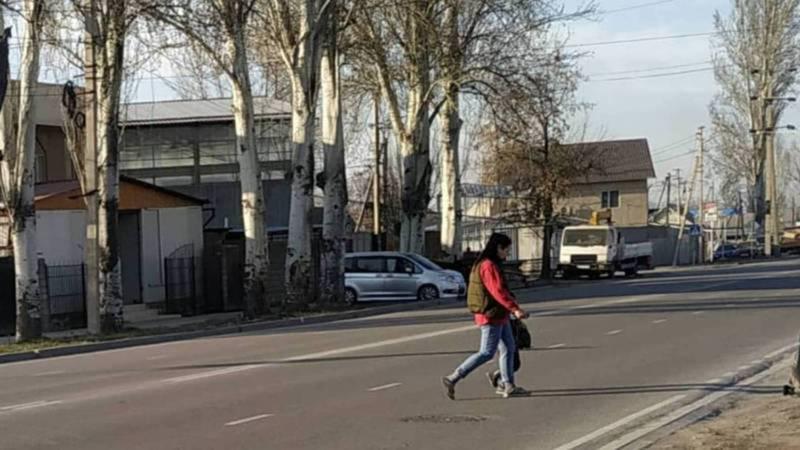 Разметка пешеходного перехода на ул.Тоголок Молдо возле школы №18 будет нанесена в течении марта текущего года, - мэрия