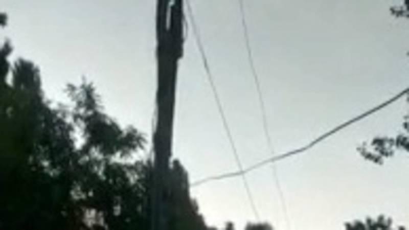 Житель села Жаны-Акман жалуется на состояние электропроводов. Видео