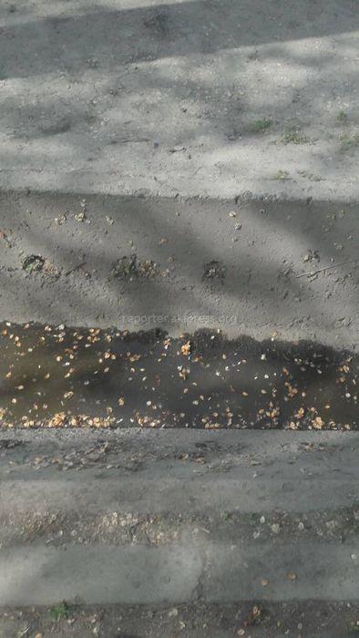 Сотрудники «Тазалыка» устранили последствия зловония на Московской-Абдрахманова (фото)