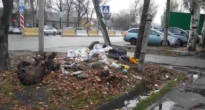 На участке проспекта Жибек Жолу нет ни одного мусорного бака, - бишкекчанин