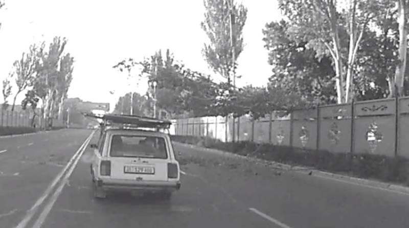 Момент падения дерева на автомобиль попало на видео