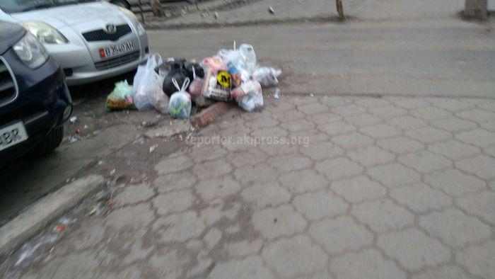 СЭИ поговорила с жителями ул.Гоголя, чтобы они не бросали мусор в неположенном месте