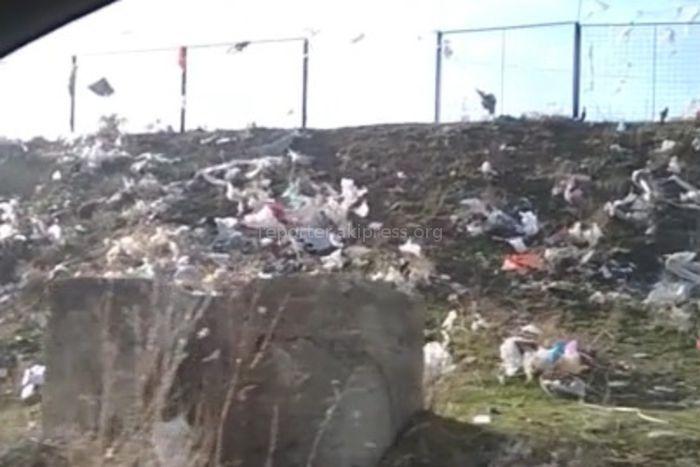 На окраине Кемина близ кладбища образовалась свалка <i>(видео)</i>