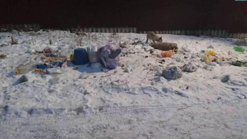 Аламединская райадминистрация сообщает, что мусорные контейнеры в селе Таш-Добо убраны из-за безответственности жителей. Жители не согласны с этим