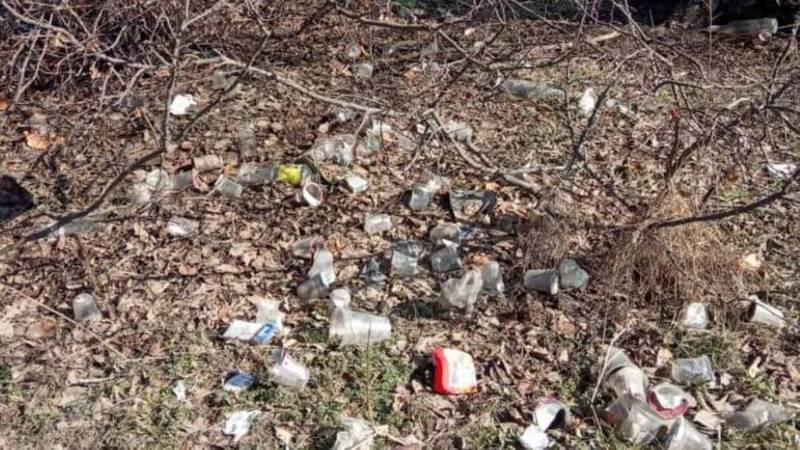 Когда уберут мусор на лесополосе на Валиханова-Исакеева? (фото)