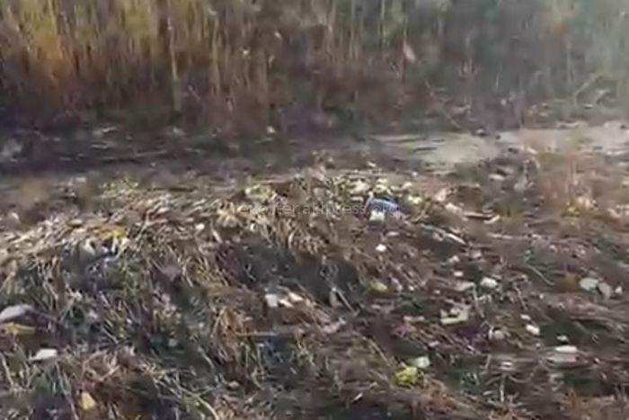 Бишкекчанин просит убрать мусор на некоторых участках мкр Тунгуч и жилмассива Рухий-Мурас (видео)