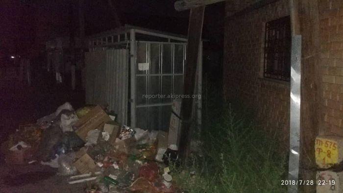 Комиссия решила установить мусорную площадку на Тойгонбаева-Адышева, - мэрия Бишкека